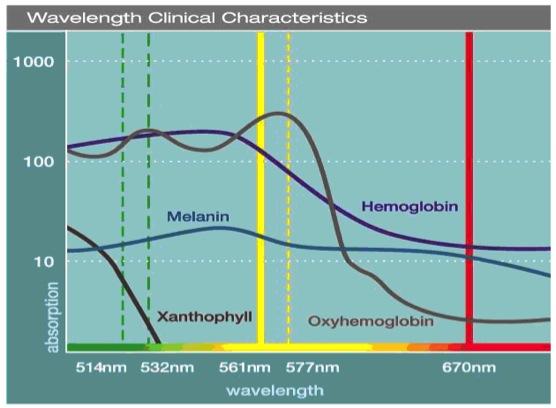 Na wykresie pokazano skuteczność absorbcji poszczególnych wiązek laserowych przez melaninę, ksantofil, oksyhemoglobinę i hemoglobinę. Długość fali 532nm, w najbardziej powszechnym laserze siatkówkowym, jest najlepiej pochłaniana przez hemoglobinę i oksyhemoglobinę, średnio przez melaninę i w niewielkim stopniu przez ksantofil. W przypadku fali 577nm, stosowanej w laserach żółtych, pochłanianie hemoglobiny, oksyhemoglobiny i melaniny są na podobnym poziomie, co w 532nm, jednak zupełnie nie jest ona pochłaniana przez ksantofil. Ta właściwość powoduje, że laser ten może być bezpiecznie stosowany w okolicy plamkowej. To jego główna przewaga nad laserem 532nm.